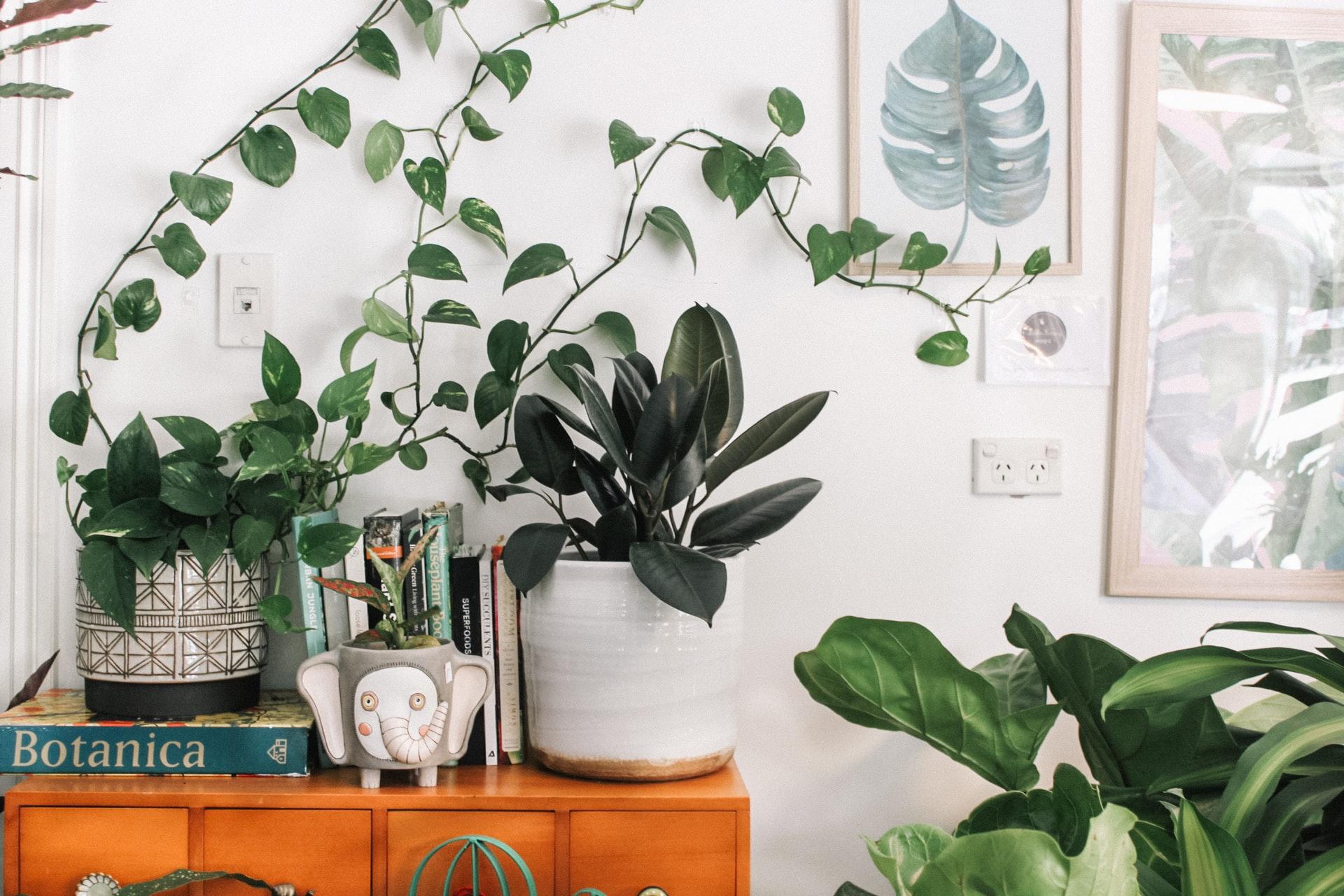 Ideas de decoración para un salón pequeño