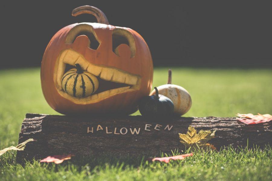 Addobbi di Halloween.. i più stravaganti in UK e USA!